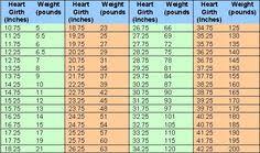 Inquisitive Boer Goats Weight Chart Dwarf Growth Chart Goat