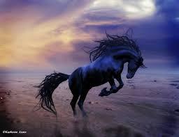 wild horse paintings photo 28