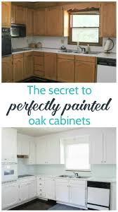 Plain Painting Oak Kitchen Cabinets White With Decorating