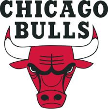 2012 Chicago Bulls Bench Mob HD  YouTubeChicago Bulls Bench Mob