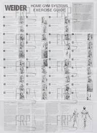 69 Bright Weider Pro Exercise Chart