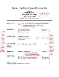 Freelance Writer Resume Sample Free Resume Samples For Hairstylist Create Professional Resumes Cv 90