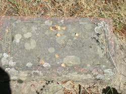 Iva Reid Bass (1898-1955) - Find A Grave Memorial