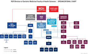 University Hospital Organizational Chart Mcmaster University Department Of Medicine Division Of