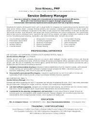 Customer Care Executive Resume Penza Poisk