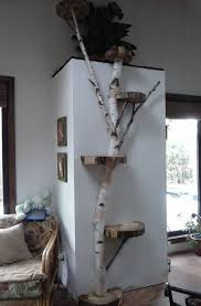 cool cat tree furniture. How Cool Is This? White Birch Wall Cat Tree #pets #cats Furniture A