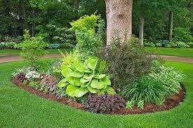 Stylish Landscaping Ideas Around Trees Backyard Privacy Landscaping Ideas  With Trees Best Landscaping