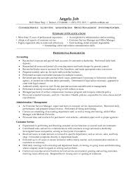 Professional Resume Services Example Of Cv With Personal Statement