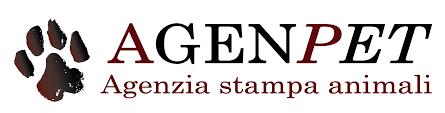 Governo: riammessi al voto i senatori Lello Ciampolillo e Riccardo Nencini  - Agenpet