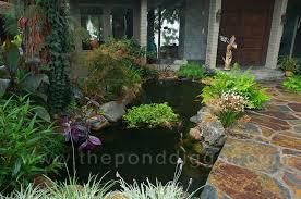 koi pond lighting ideas. exellent pond koi pond construction inside koi pond lighting ideas
