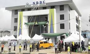 Infighting in IYC over plan to shut down NDDC head office