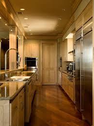 kitchen lighting houzz. Galley Kitchen Lighting Houzz