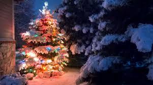 Weihnachtsbeleuchtung Für Innen Und Aussen Bei Jumbo Online