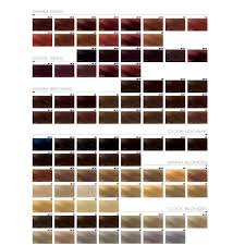 Goldwell Hair Color Chart Goldwell Topchic Color Mixing Instructions