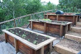 organic garden consulting and design in