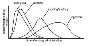Drug Test Detection Time We Offer Many Different Drug