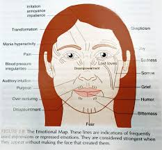 Image Result For Face Reading In Chinese Medicine Chinese