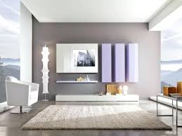 shocking painting living room tips pictures ideas