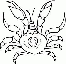 Small Picture Printable Hermit Crab Coloring Pages Coloring Me