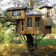 Pete Nelsonu0027s Tardis Treehouse  Treehouse By DesignTreehouse By Treehouse Builder Pete Nelson
