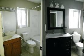 Remodeling A Bathroom On A Budget Impressive Design Inspiration