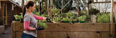 how to build a vegetable garden. DIY Vegetable Garden Box How To Build A L