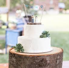 simple wedding cake. rustic wedding cake with succulents simple