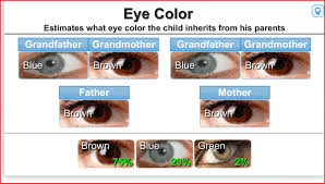 Eye Hair Color Genetics Chart Genetics Of Hair Color Calculator