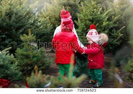 Cartoon Vector Of Happy Kids Decorating A Christmas Tree Together Christmas Tree Kids