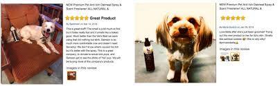 Amazon.com : Premium Pet Anti Itch Deodorant Spray & Scent Freshener ...