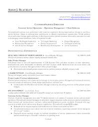 Customer Airport Customer Service Resume
