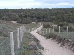 dunes plage de chaucre