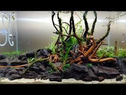 aquascape ada cube garden 60p bank of river ada sansui stones