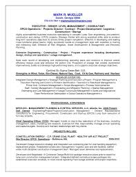 Best Solutions Of Chief Project Engineer Sample Resume 6