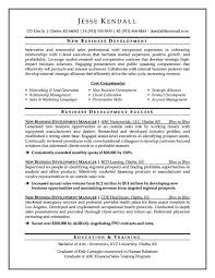 Cover Letter Executive Resumes Samples Free Free Executive Assistant