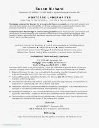Credit Analyst Resume Resume Templates Business Analyst Resume Templates Just As Sample