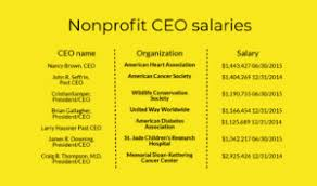 Nonprofit Ceo Salaries Chart Opinion Which Non Profits Can We Even Trust Anymore The