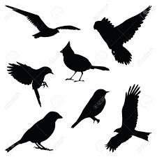 鳥のシルエット イラスト セット