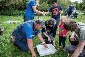 Wild Challenge Wednesday: Bug Hunting - Event - Great Preston - West  Yorkshire | Welcome to Yorkshire