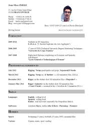 Gallery Of Examples Of Cv In English Curriculum Vitae Guideline