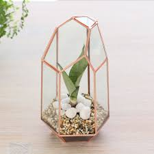 Small Picture Tall Geometric Glass TerrariumIndoor Planter Copper Home