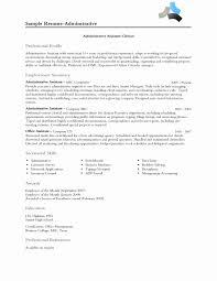 50 Elegant Resume Profile Examples Resume For Job