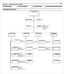 Hospital Hierarchy Chart Organization Organizational Clicktips Info