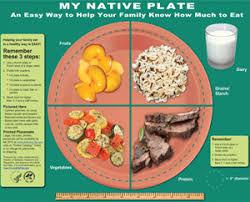 healthy food plate diagram. Wonderful Food My Native Plate Throughout Healthy Food Diagram E
