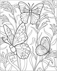 butterfly coloring book printable.  Printable Impressive Butterfly Colouring Book Opportunities Coloring Tk For Printable O