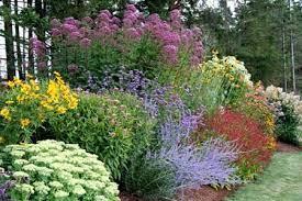 perennial garden design garden flowers