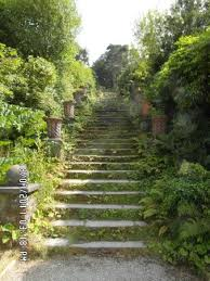 bantry house garden steps in gardens