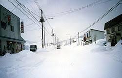 「1978年 - 北海道幌加内町母子里の北海道大学演習林で最低気温氷点下41.2℃を記録」の画像検索結果