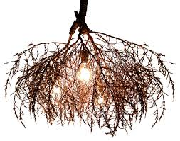 awesome tree branch chandeliers houzz regarding chandelier tree branch chandelier e24