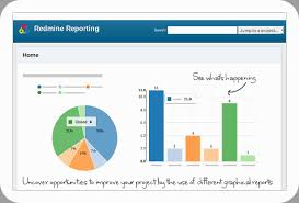 Redmine Charts Plugin Redmine Reporting Plugin Smarter Project Insights Alphanodes